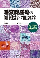 唾液腺腫瘍の組織診・細胞診 コンサルテーション症例に学ぶ実践的診断法