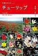 チューリップ?ヨーロッパ・アジア9カ国紀行 原種の花たち