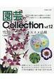 園芸Collection (12)