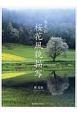 春光彩 桜花風貌描写