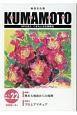 KUMAMOTO 2018.13 特集:熊本大地震からの復興/プロとアマチュア 総合文化誌(22)