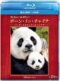 ディズニーネイチャー/ボーン・イン・チャイナ -パンダ・ユキヒョウ・キンシコウ- ブルーレイ+DVDセット