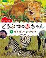 くらべよう! どうぶつの赤ちゃん ライオン・シマウマ (1)