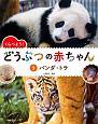 くらべよう! どうぶつの赤ちゃん パンダ・トラ (2)