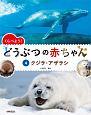 くらべよう! どうぶつの赤ちゃん クジラ・アザラシ (4)