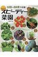 10日~3か月で収穫!コンテナスピーディー菜園 少ない手間で、とれたて野菜を味わえる!