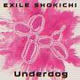 Underdog(DVD付)