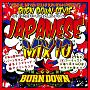 100% JAPANESE DUB PLATES EXCLUSIVE MIX CD BURN DOWN STYLE JAPANESE MIX 10