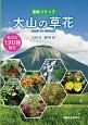 大山の草花-霊峰スケッチ-