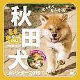 むくむくもふもふ 秋田犬 カレンダー 2019