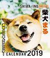 柴犬まる週めくり卓上カレンダー 2019
