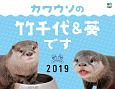 カワウソの竹千代&葵です カレンダー 2019