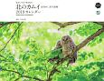 カレンダー 東京カメラ部×■出版社 北のカムイ 命煌めく、野生動物