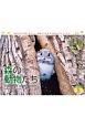 太田達也セレクション 森の動物たち Tiny Story in the Forests カレンダー