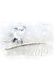 熊谷勝の小鳥カレンダー 愛らしい鳥たち 2019