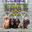 大判カレンダー ミニチュア・ダックスフンド 2019