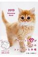 Schedule Book CAT 2019
