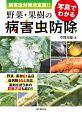 写真でわかる野菜・果樹の病害虫防除 病害虫対策<決定版>!!
