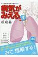 病気がみえる<第3版> 呼吸器 (4)